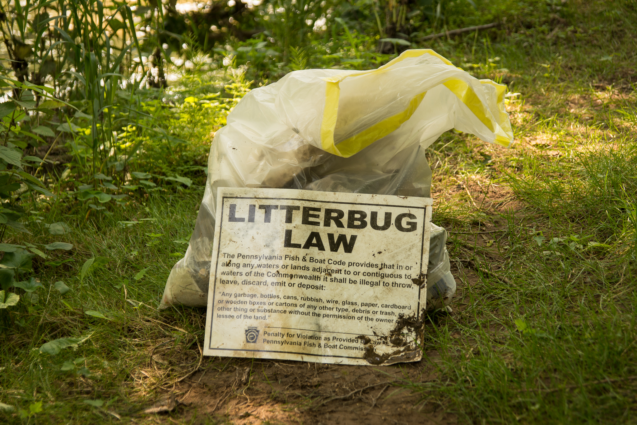 Litterbug Law Poster