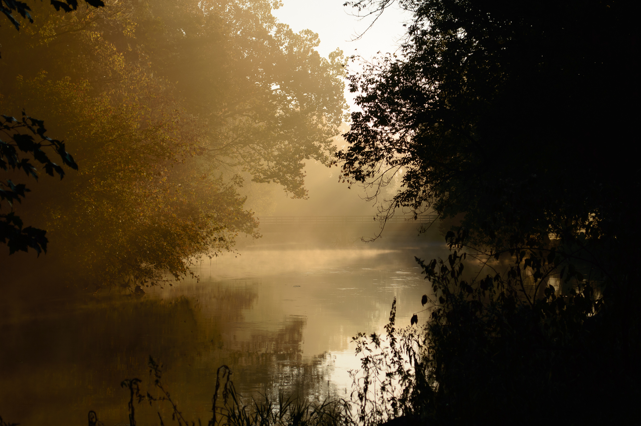 Conestoga River Photo Essay – Introduction