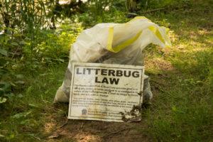 Litterbug Law Poster